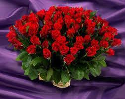 Un Bouquet De Fleurs Pour Toi Martine Fleurs D Anniversaire