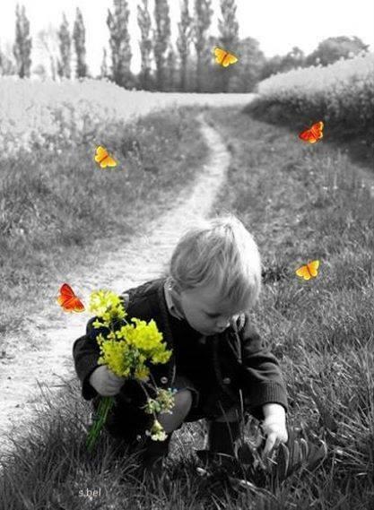http://ladouceurdunsoir.l.a.pic.centerblog.net/88b67267.jpg
